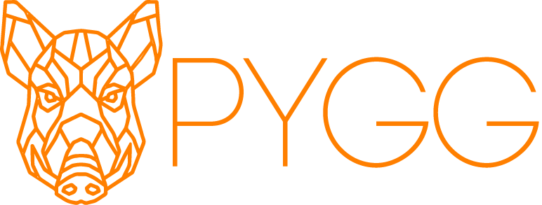 PYGG Capital Structuring Partners