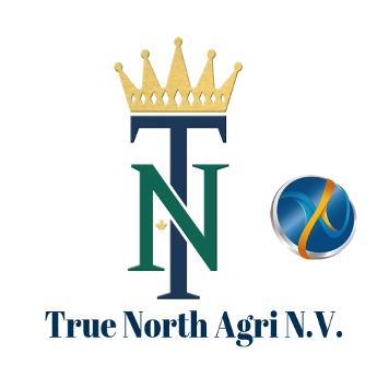 True-North-dcsx